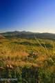166 Ramada Trail - Photo 6