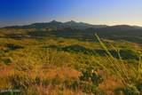 166 Ramada Trail - Photo 9