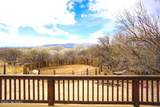 2521 Horny Toad Trail - Photo 24