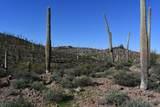 0 El Camino Del Cerro - Photo 31