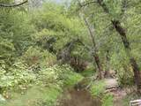 TBD Camino Real - Photo 22