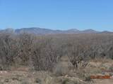 29999 Deer Flat Road - Photo 13