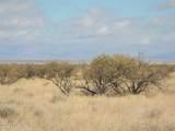 4.48 Acres Ironwood Rd - Photo 9
