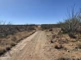 TBD Bucking Horse Road - Photo 12