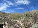 14871 Sonora Vista Canyon Place - Photo 19