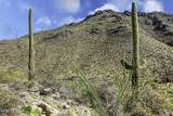 14871 Sonora Vista Canyon Place - Photo 21