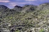 14871 Sonora Vista Canyon Place - Photo 28
