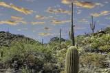 14871 Sonora Vista Canyon Place - Photo 6