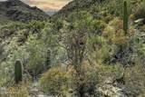 14871 Sonora Vista Canyon Place - Photo 7