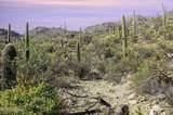 14871 Sonora Vista Canyon Place - Photo 9