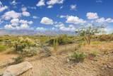 14502 Giant Saguaro Place - Photo 5