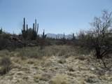 14521 Rocky Highlands Drive - Photo 3