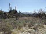 14521 Rocky Highlands Drive - Photo 6