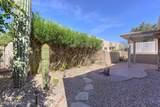 3824 Camino Comica - Photo 21