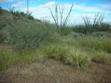 10600 Ocotillo Rim Trail - Photo 21