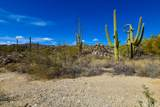14556 Blazing Canyon Drive - Photo 19