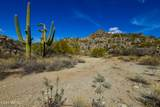 14556 Blazing Canyon Drive - Photo 5