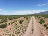 923 Acre Leslie Canyon Ranch - Photo 12