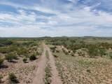 923 Acre Leslie Canyon Ranch - Photo 15