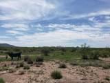 923 Acre Leslie Canyon Ranch - Photo 23