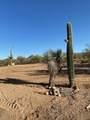 7260 Desert Plains Drive - Photo 23