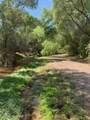 6310 Cascabel Road - Photo 37