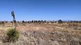 38 Lots in Sunsites Village - Photo 35