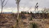 38 Lots in Sunsites Village - Photo 41