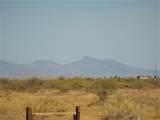 7250 Camino Verde Drive - Photo 44