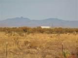 7250 Camino Verde Drive - Photo 50