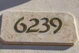 6239 Speaks Trail - Photo 4