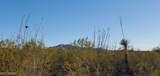 2880 Shasta Lane - Photo 14