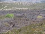 11825 Agua Verde Road - Photo 14