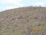 11825 Agua Verde Road - Photo 15