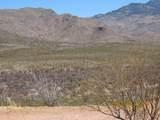 11825 Agua Verde Road - Photo 25