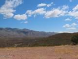 11825 Agua Verde Road - Photo 8