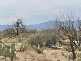 15128 Sierrita Mountain Road - Photo 2