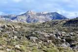 16500 Ridge Rock Trail - Photo 1