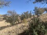TBD Sierra Grande Ranch Road - Photo 24