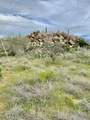 1484 Tortolita Mountain Circle - Photo 5