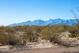 4080 Saguaro Path Court - Photo 11