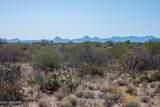 4080 Saguaro Path Court - Photo 19