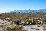 4080 Saguaro Path Court - Photo 2
