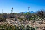 4080 Saguaro Path Court - Photo 21