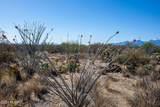 4080 Saguaro Path Court - Photo 22