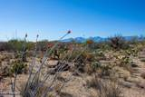 4080 Saguaro Path Court - Photo 23