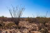 4080 Saguaro Path Court - Photo 24