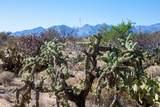 4080 Saguaro Path Court - Photo 25