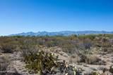 4080 Saguaro Path Court - Photo 5
