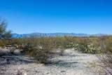 4080 Saguaro Path Court - Photo 7